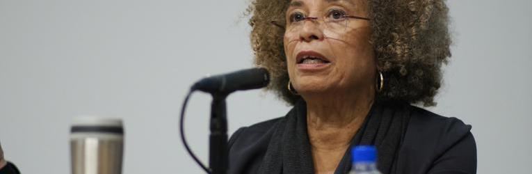 Angela_Davis_Enclosures.jpg