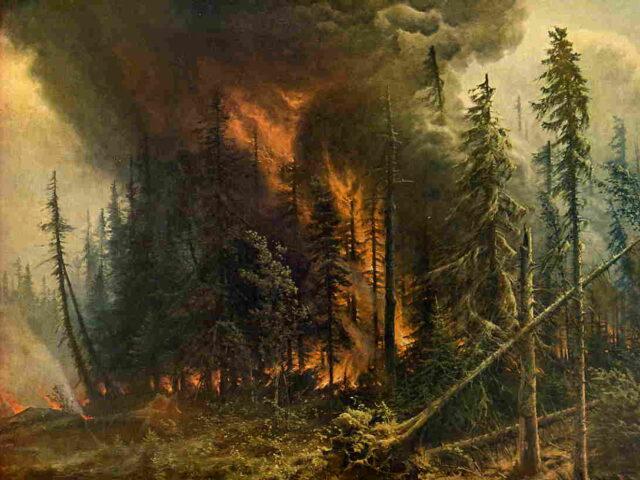 Incendies en Grèce : comment expliquer le désastre ?