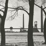 Le Covid-19, la crise écologique  et le «capitalisme de catastrophe»