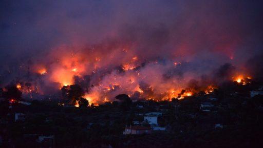 Feux de forêt mortels dans l'Attique : une tragédie prévisible