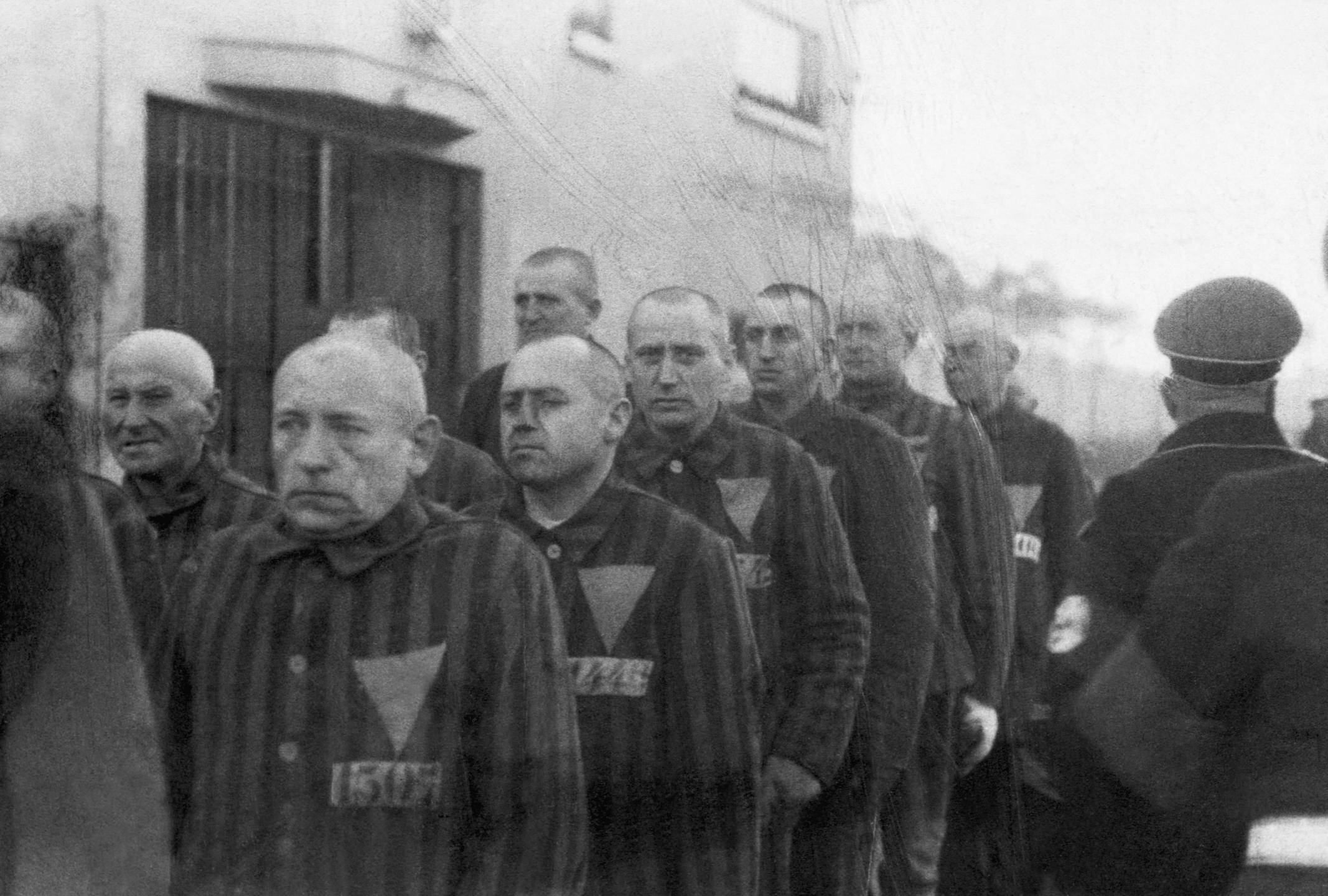 nazisme, transmisogynie, homophobie, antisémitisme