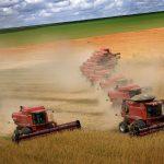 Agriculture, paysannerie et pandémie. Entretien avec Roxanne Mitralias